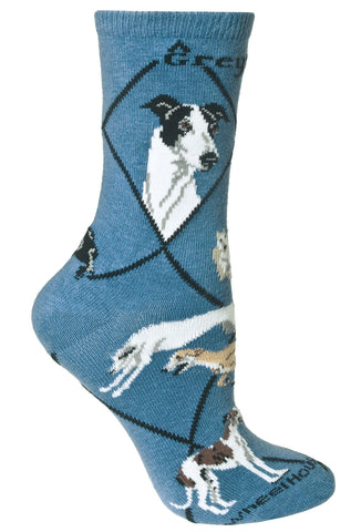 Greyhound on Blue Socks