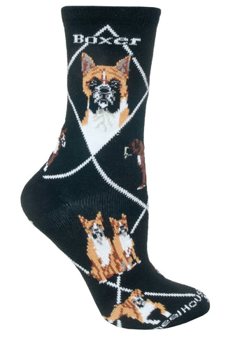 Boxer on Black Socks