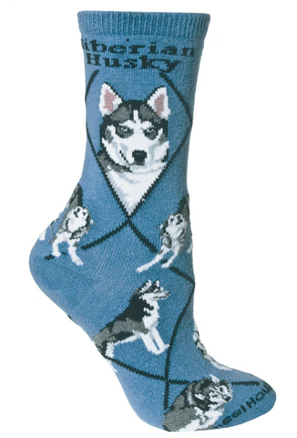 Siberian Husky on Blue Socks