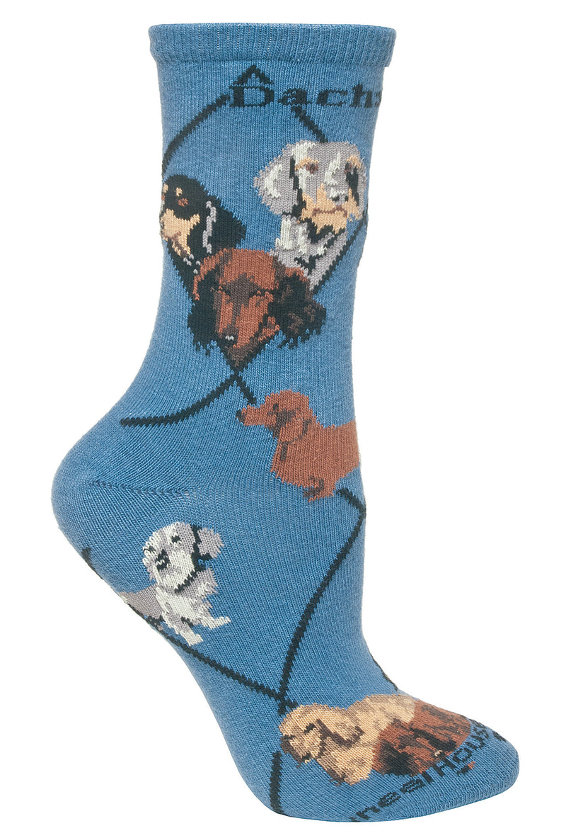 3 Dachshunds on Blue Socks