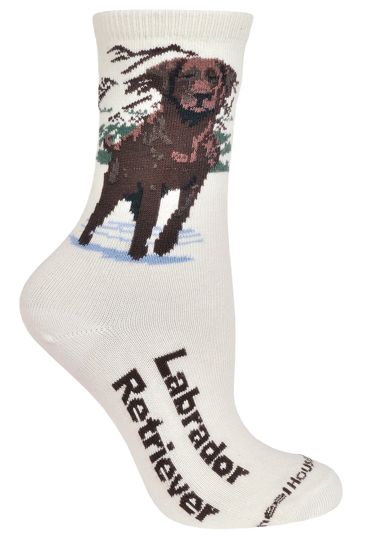 Chocolate Labrador Retriever on Natural Crew Socks