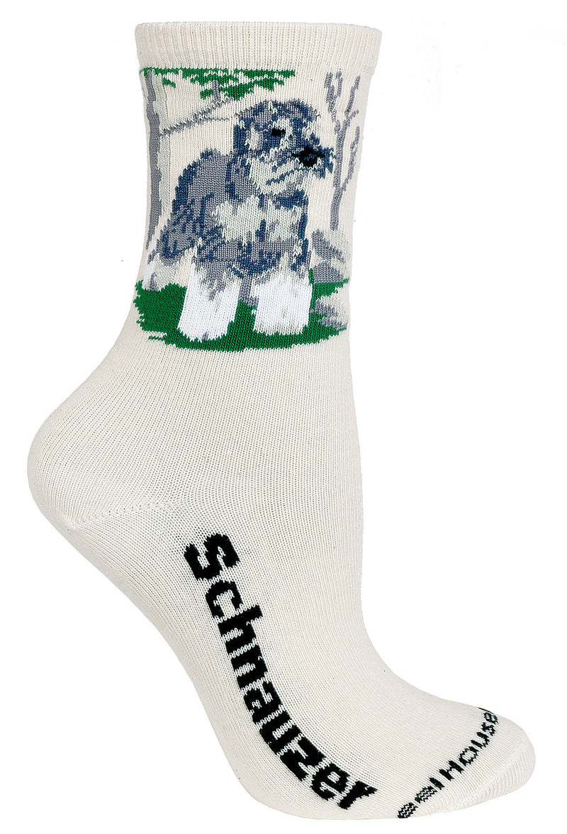 Schnauzer on Natural Socks