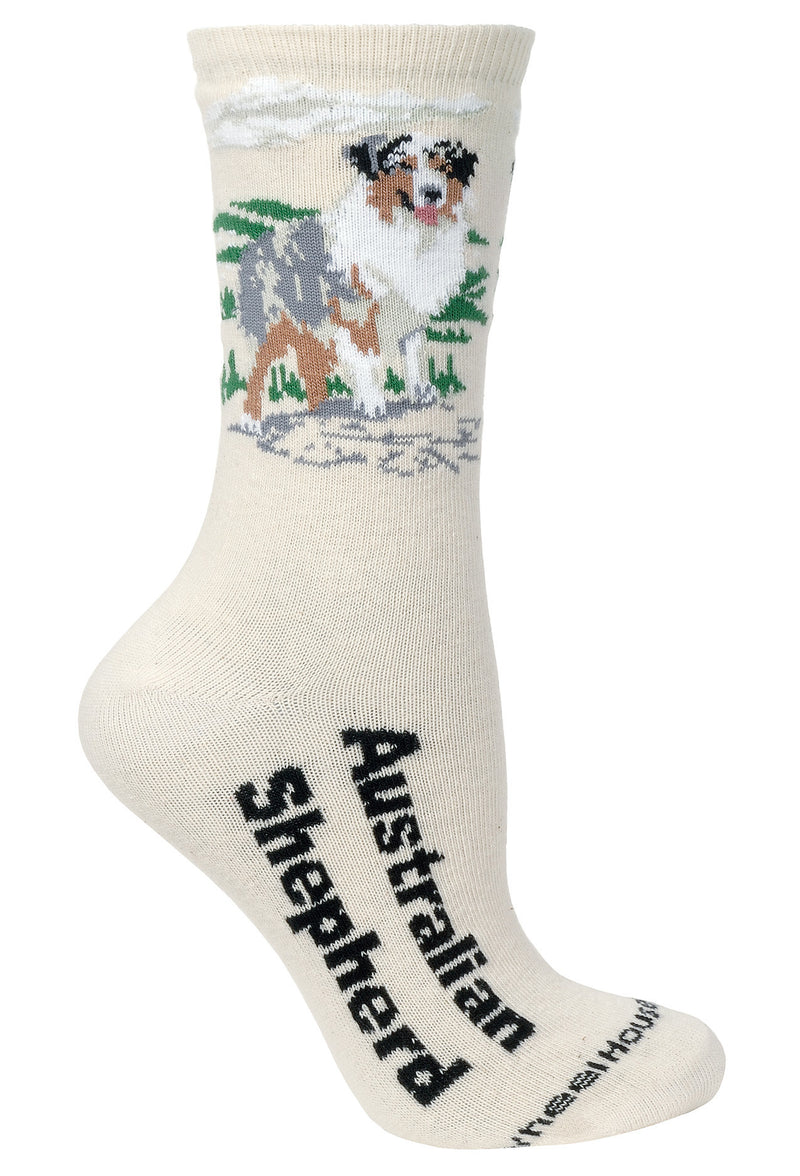 Australian Shepherd Crew Socks on Natural