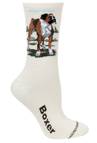 Boxer on Natural Socks