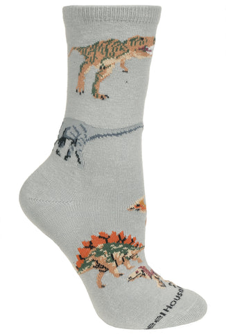 Dinosaurs on Gray Socks