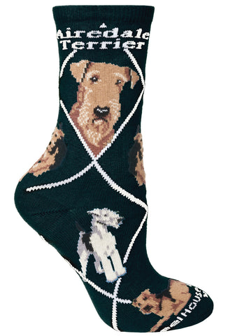 Airedale on Black Socks