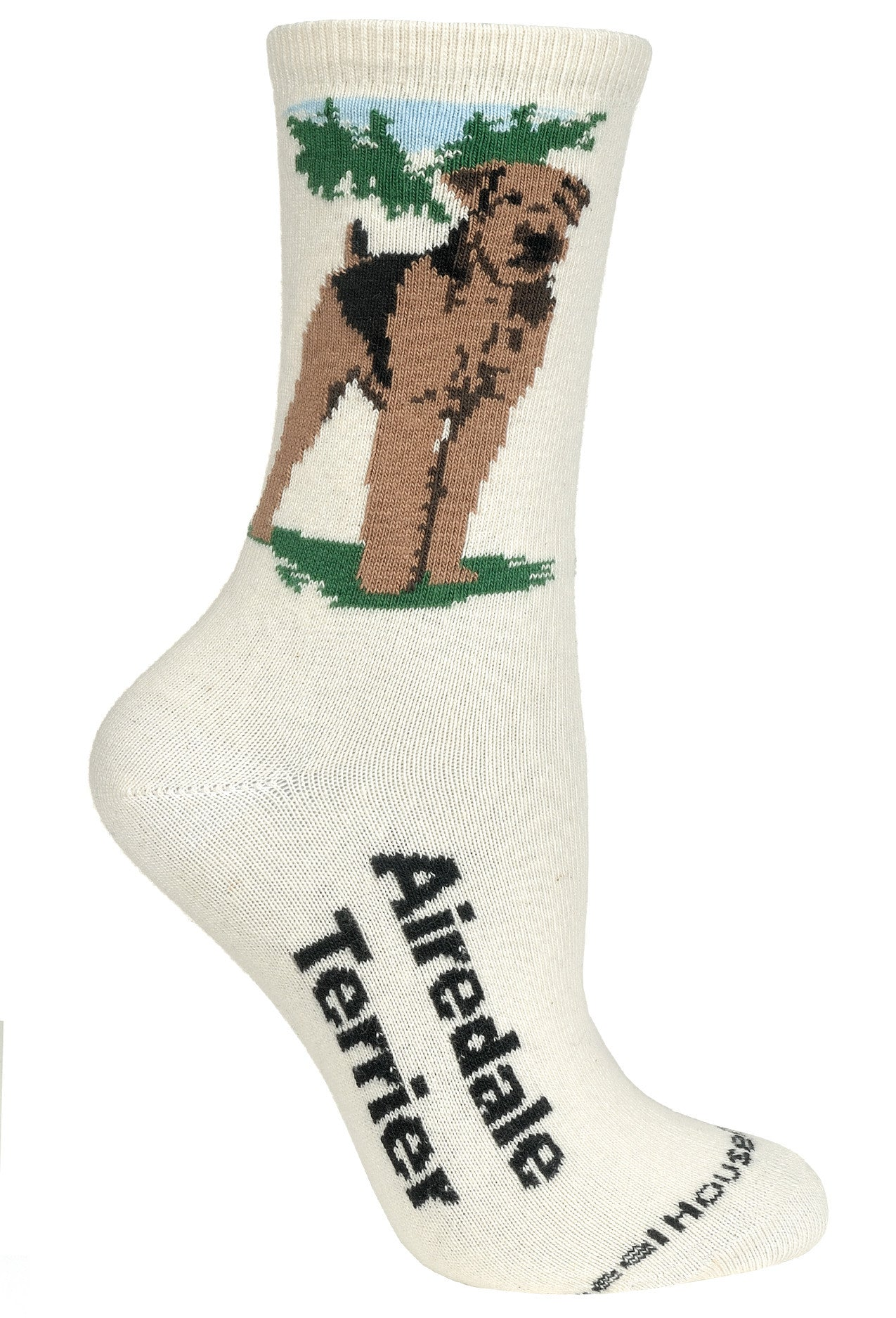 Airedale Terrier on Natural Socks