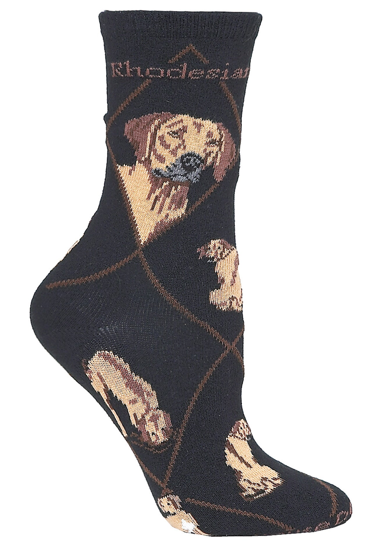Rhodesian Ridgeback on Black Socks