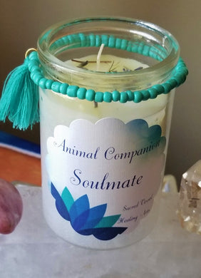 Pet Animal Companion Soulmate Vigil Candle ~ New Pet Intention