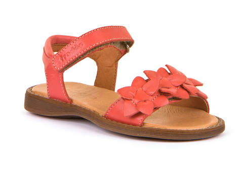 G3150153-3 Coral