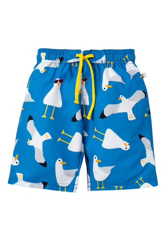 Board Shorts - Guys & Gulls