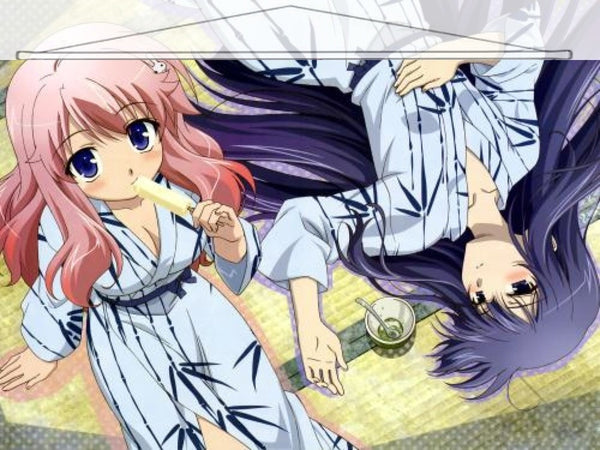 Baka and Test Japanese Anime Wall Scroll Poster and Banner 11