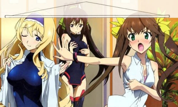 Infinite Stratos Japanese Anime Wall Scroll Poster and Banner 12 - Anime Dakimakura Pillow Shop | Fast, Free Shipping, Dakimakura Pillow & Cover shop, pillow For sale, Dakimakura Japan Store, Buy Custom Hugging Pillow Cover - 1