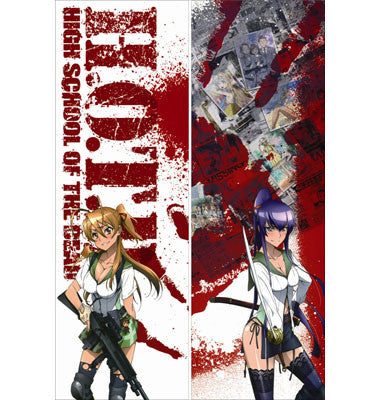 New Highschool of the Dead Dakimakura - Anime Dakimakura Pillow Shop | Fast, Free Shipping, Dakimakura Pillow & Cover shop, pillow For sale, Dakimakura Japan Store, Buy Custom Hugging Pillow Cover - 1