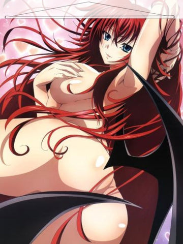 High School DxD Japanese Anime Wall Scroll Poster and Banner 4 - Anime Dakimakura Pillow Shop | Fast, Free Shipping, Dakimakura Pillow & Cover shop, pillow For sale, Dakimakura Japan Store, Buy Custom Hugging Pillow Cover - 1