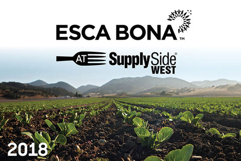 Esca Bona 5 Mission Driven Brands to Watch