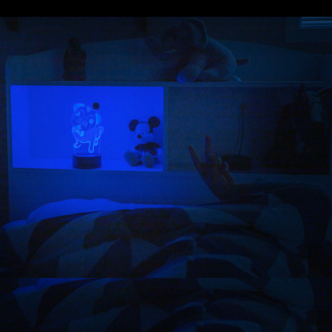 kid with pet3dleds nightlight