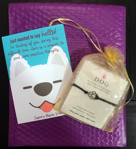 """Wish Upon a Paw"" Trio Care Package"