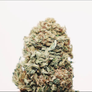 [Sold Out] Hawaiian Haze -18.2% CBD, Fruity Haze, Hybrid, Anytime, Outdoor Grown