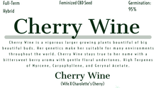 Load image into Gallery viewer, Cherry Wine Feminized Hemp Pollen