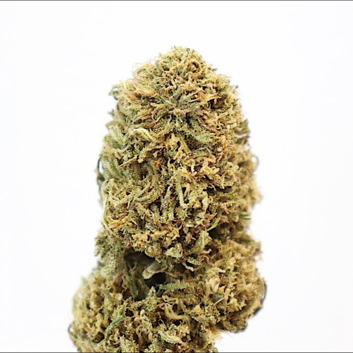 [NEW] City Girl - 17.98% CBD, Grapes & Cherry, Sativa, Uplifting, Outdoor Grown