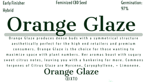 Orange Glaze Feminized CBD Hemp Seeds - Pre Order - May 31