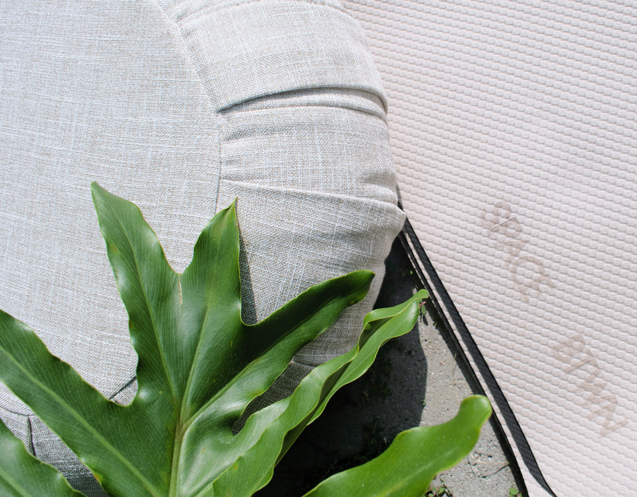 a plant leaf displayed on a meditation pillow and yoga mat