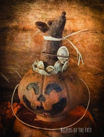 Pumpkin Seed Mouse