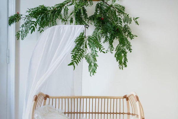 natural bed canopy