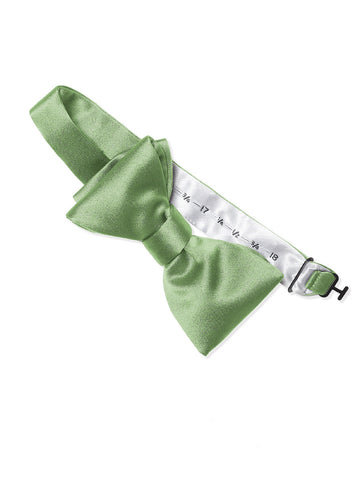 Dessy Apple-slice Matte Satin Bow Tie