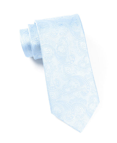 The Tie Bar Aqua Paisley Necktie