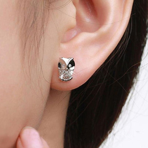 Cute Owl Stud Earrings
