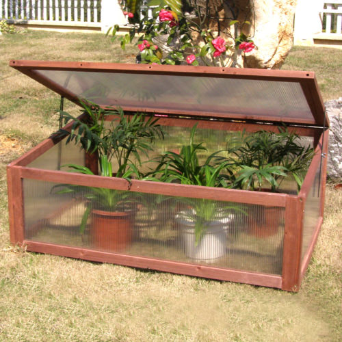 Cold Frame Mini Greenhouse