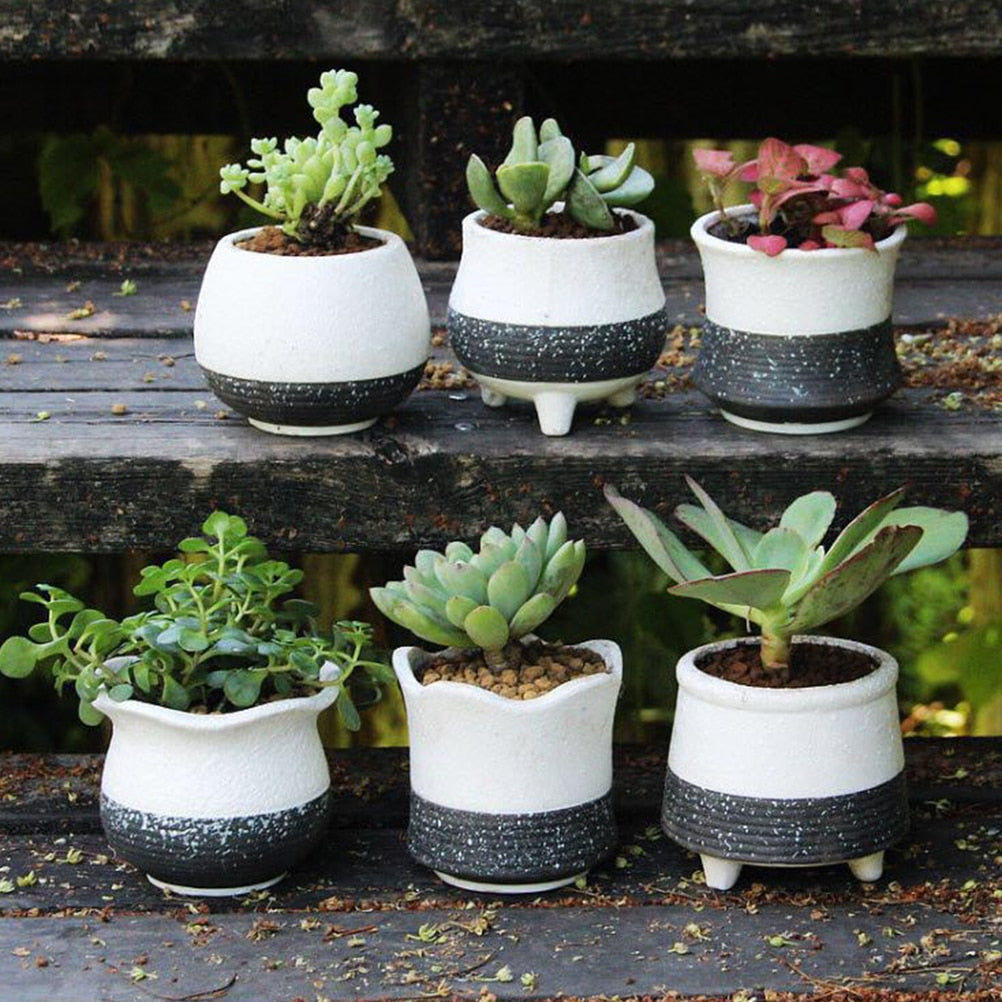 6PCS Snowflake Glaze Flower Pot Perfect for Office or Back to School