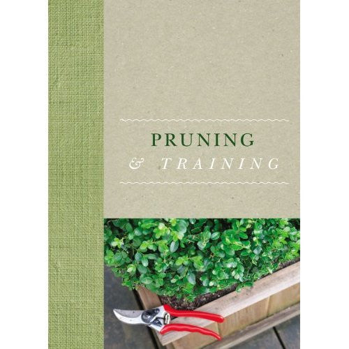 Pruning & Training
