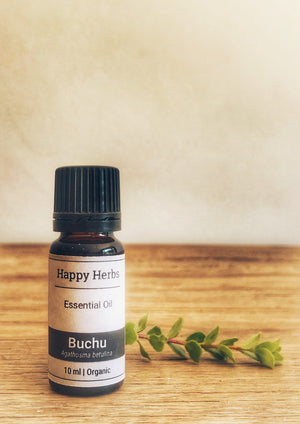 Buchu Essential Oil - Happy Herbs