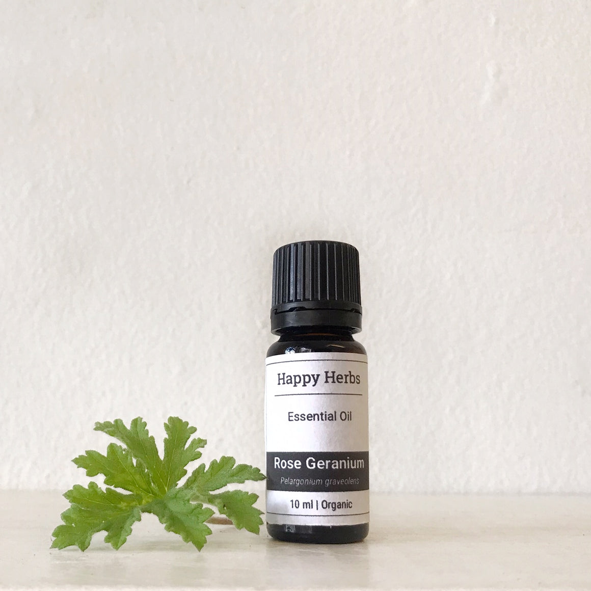 Rose Geranium essential oil - Happy Herbs