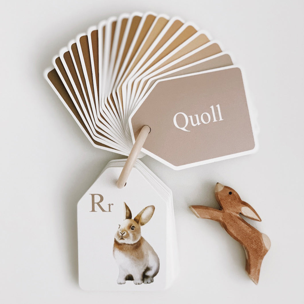Flash cards - animal alphabet