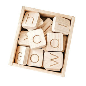 Wooden word building kit