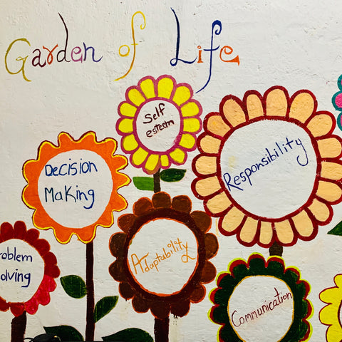Garden of Life: Decision Making, Problem Solving, Adaptability, Communication, Self Esteem, Responsibility and so on