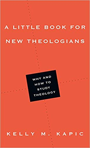 Little Book For New Theologians