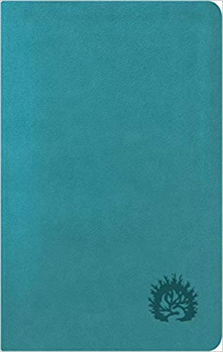 ESV Reformation Study Bible Condensed Edition - Turquoise, Leather-Like