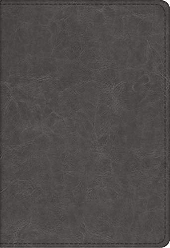 ESV Student Study Bible Trutone Gray Imitation Leather