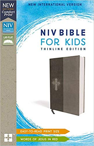 NIV Bible For Kids Thinline Imitation Leather Grey