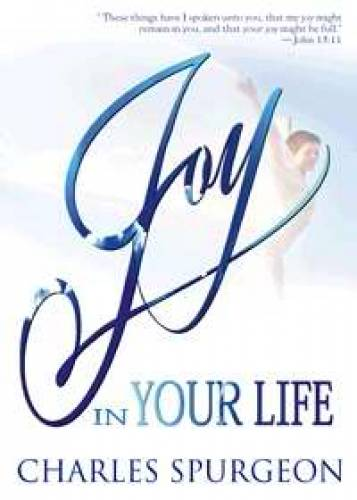 Joy in Your Life