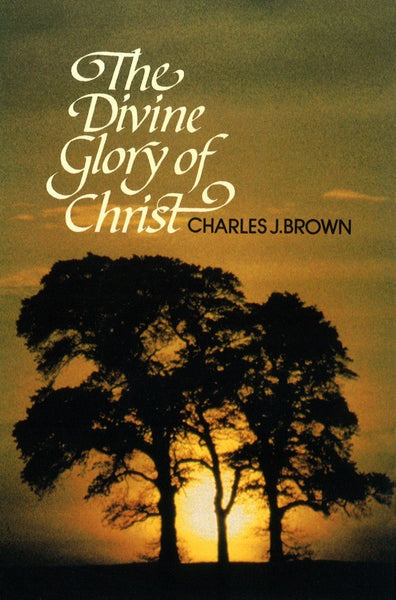 The Divine Glory of Christ
