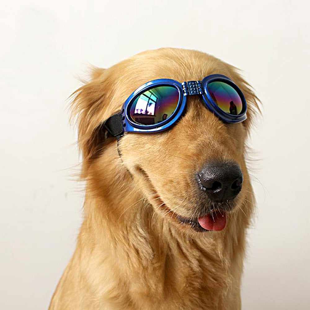 Adjustable Foldable Blue UV Sunglasses Goggles for Dogs - Slappable Shades