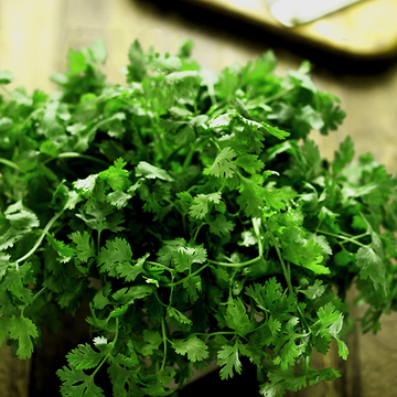 Parsley - My Spice Racks
