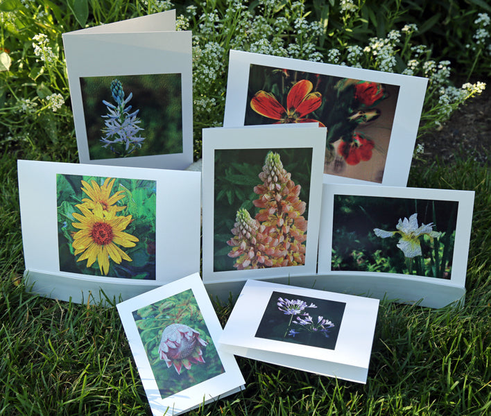 NestingCards - Floral Impressions by Peg Owens