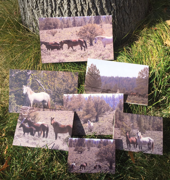 NestingCards - Wild Horses Pulled Me Away by Brian Davis